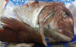 鯛のアラを使った鯛めしの作り方03